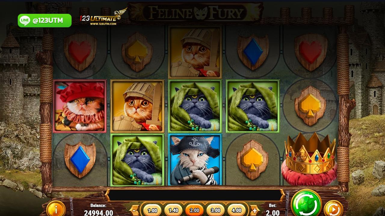 ร่วมสนุกไปกับเกมสล็อตออนไลน์ Feline Fury